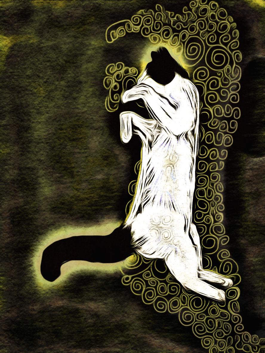 The Dancing Cat: Thomas on woodblock swirls