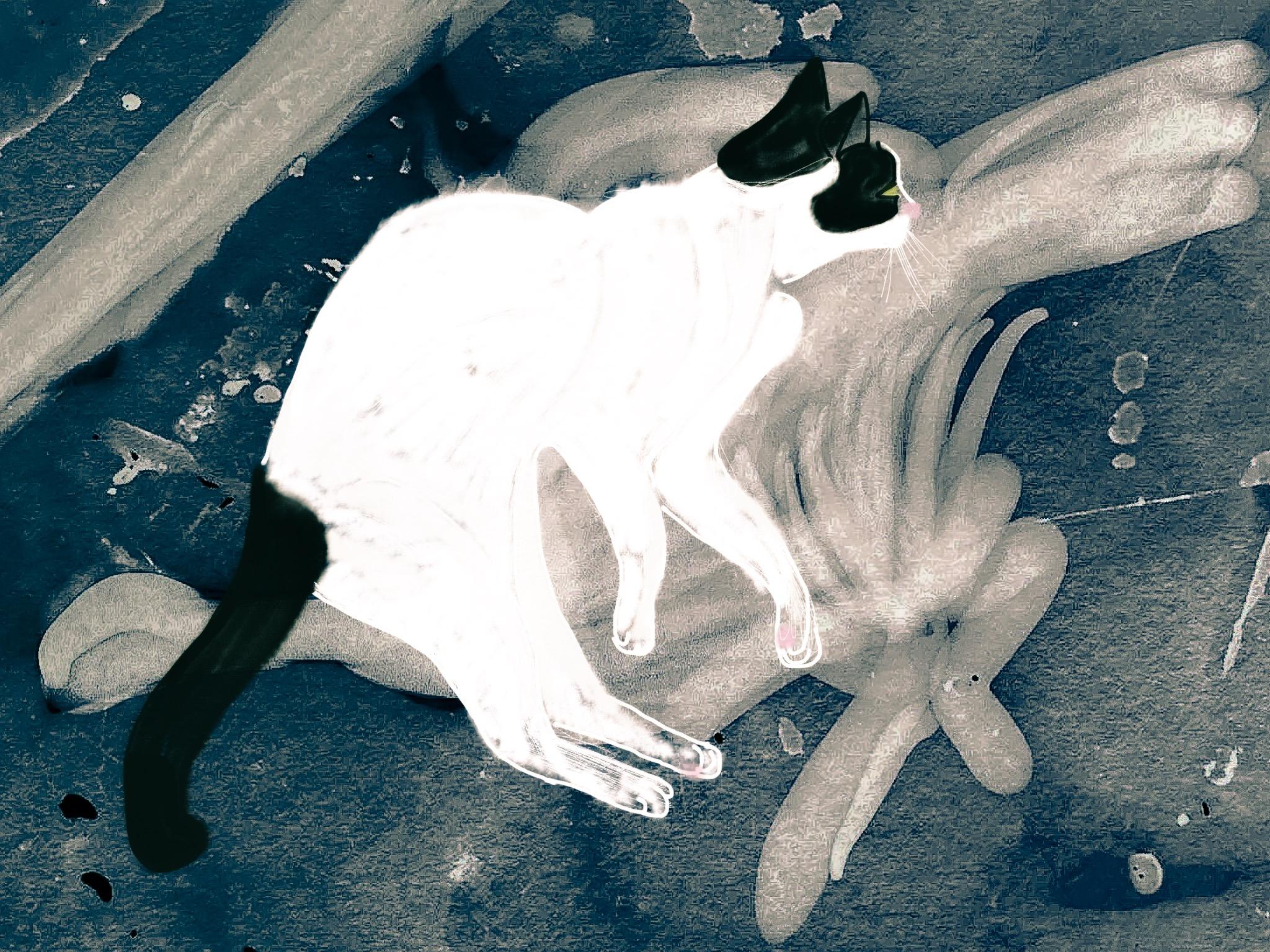 The Dancing Cat: Thomas the Dancing Cat, Ink