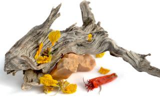 Desert scene: driftwood, stone, and dried flowers