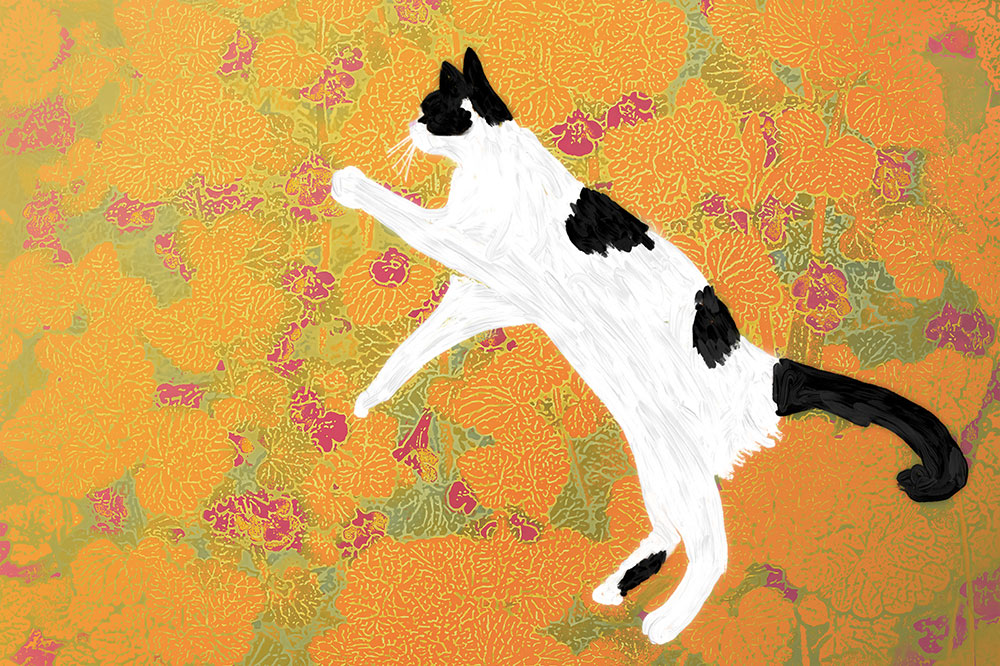 The Dancing Cat: Orange Leaves
