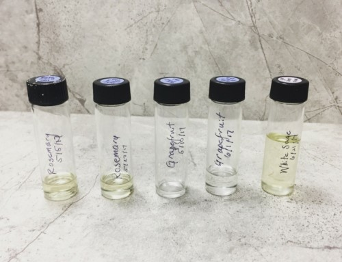 Steam Distilling Essential Oils at Home