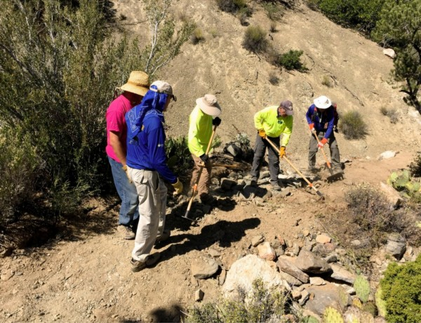Trail Maintenance: Introduction (Wildcrafting and Trail Crew)
