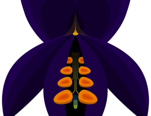Design: Indigo Bush (Psorothamnus schottii)