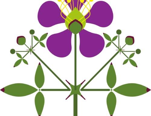 Design: Fagonia laevis